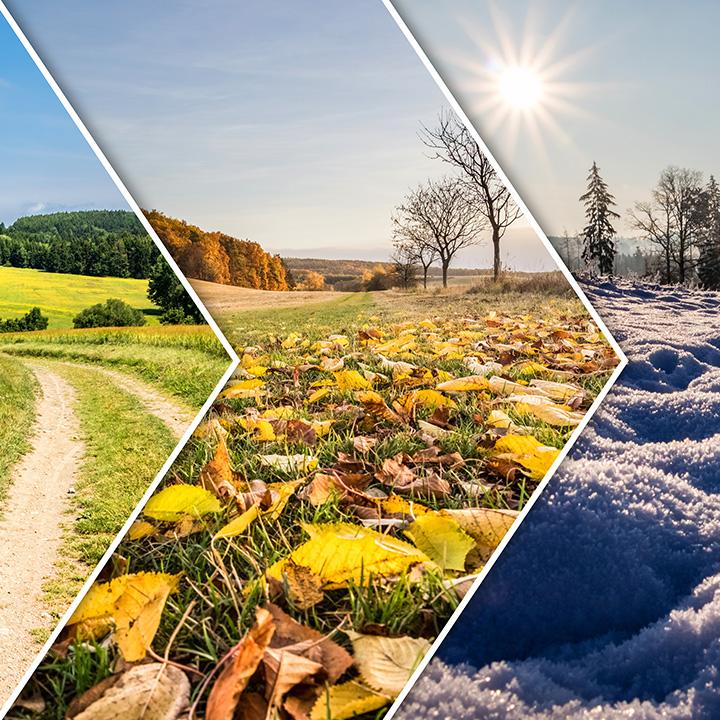 季節ごとにさまざまな魅力をお届け